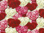 """Bed of Roses"", Herbie Licensed for Wilmington Prints"