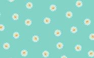 Patchworkstoff, Spring Daisy, Frühjahr 2020, Gänseblümchen, 2194, Makower