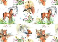 Jersey, Pferde, Fohlen