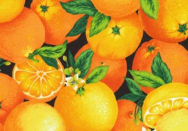 Patchworkstoff, Orangen, Farmer John´s Garden, Gemüse, Küche