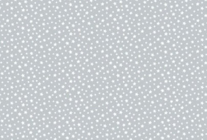 Patchworkstoff, Essentials Star, White on Pewter,306 S3 Weiß auf Grau
